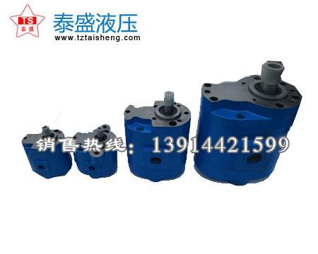 CB-B16╱16,25╱25,16╱25,80╱80双联水齿轮泵