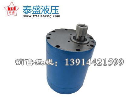 LY-B500大流量水齿轮泵