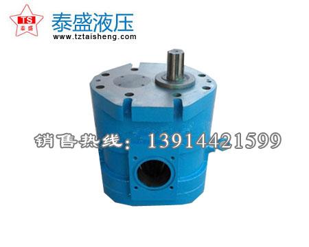 DCB-B600-FL╱700大流量水齿轮泵(椭圆形)