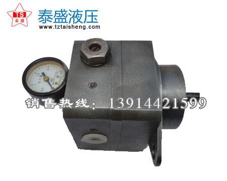 燃烧机专用齿轮油泵