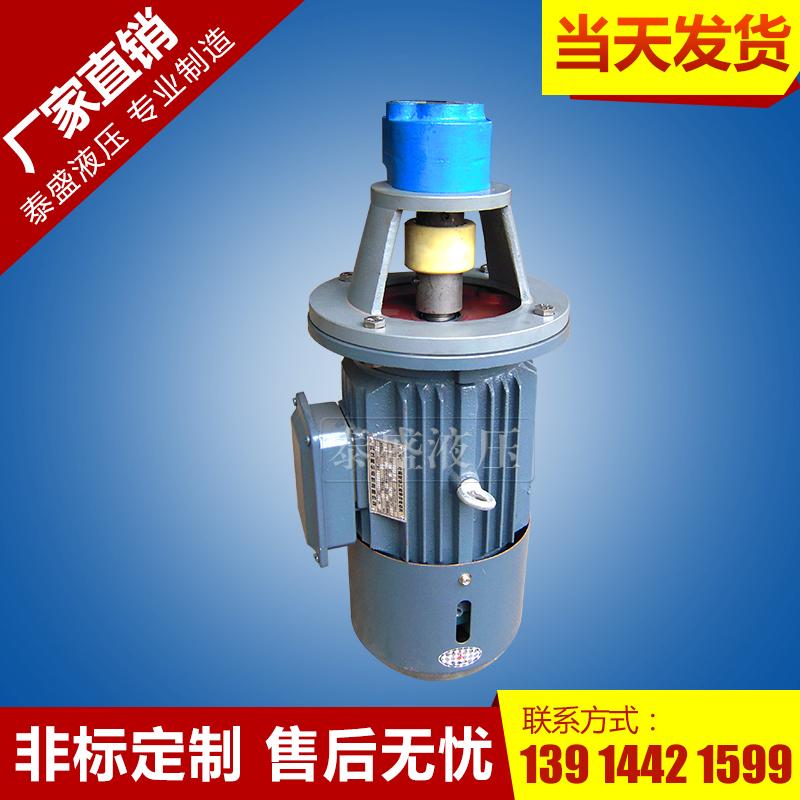 LBZ-40立式齿轮泵电机组装置