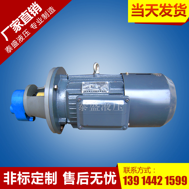 BB-B63摆线转子油泵电机组