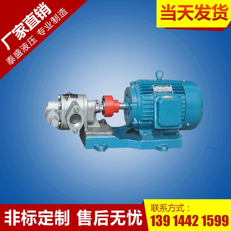 2CY-5/0.33齿轮泵