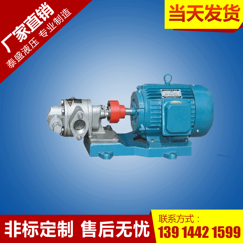 2CY-1.1/1.45齿轮泵