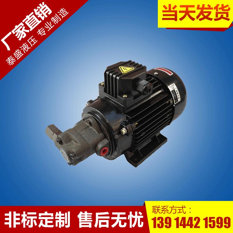 RHB-1.6润滑摆线齿轮油泵电机组