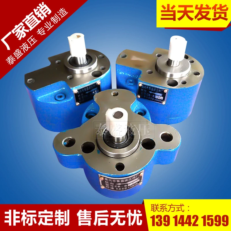 TCBW-B25低压齿轮油泵