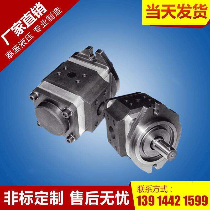 CBN-E(F)312系列中高压齿轮泵