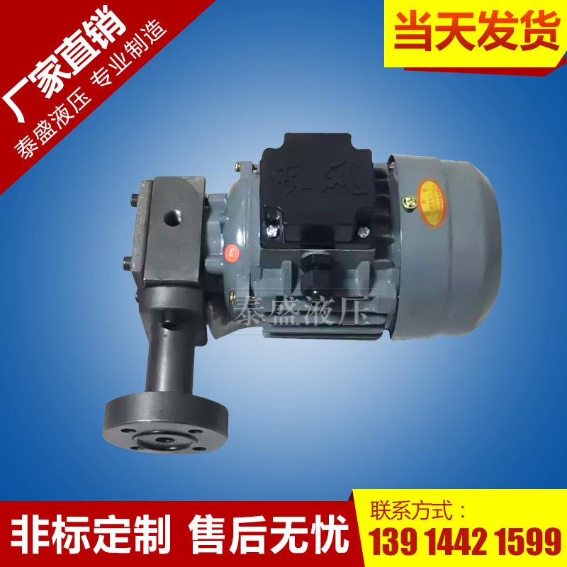 ZCB-2.5转子式油泵电机装置