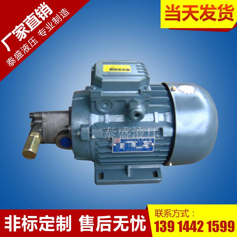 SBRB-⊹摆线油泵电机组装置