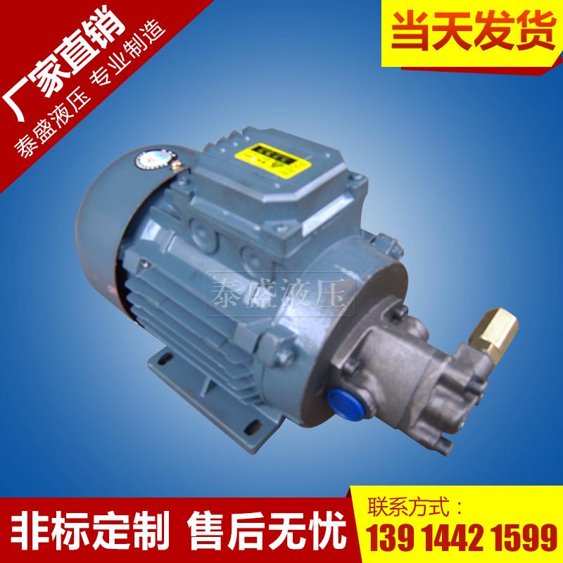 TOP润滑摆线齿轮泵电机装置
