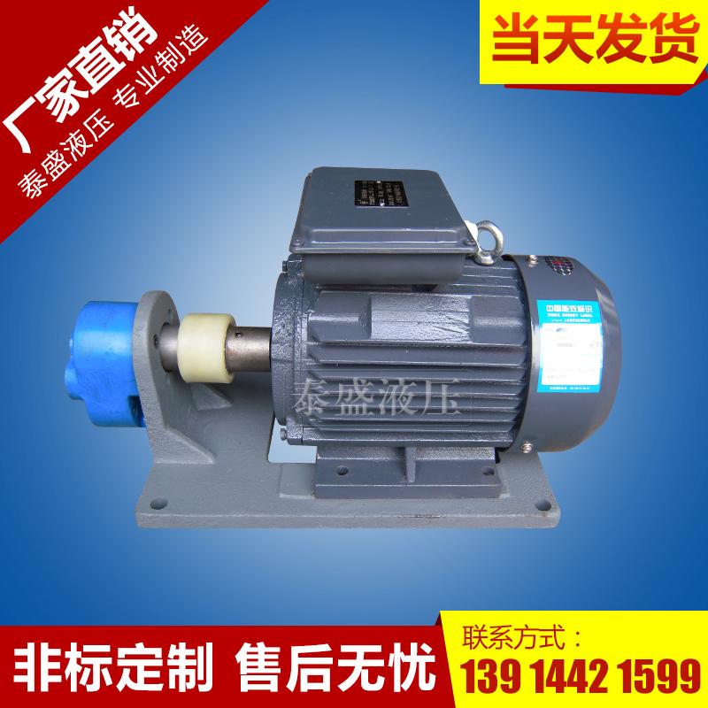 WBBZ摆线齿轮油泵单相电机组