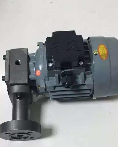 ZCB转子式油泵电机