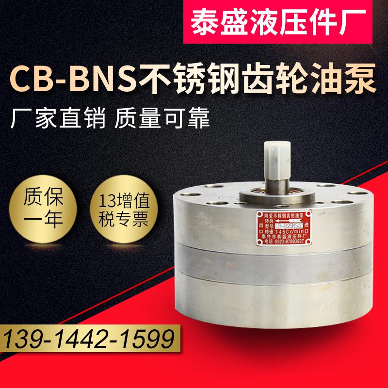 CBA-B10不锈钢耐酸碱齿轮泵
