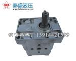 CBN-F304齿轮油泵
