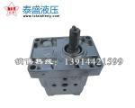 CBN-E306高压齿轮泵