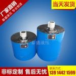 CB-BM160大流量齿轮油泵