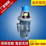 LBZ-6立式齿轮泵电机组装置