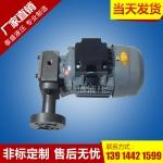 CB-2.2齿轮油泵电机组装置