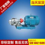 2CY-8/0.33齿轮泵