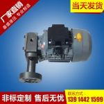 ZCB-2.2转子式油泵电机装置