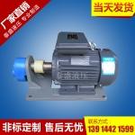 WBZ-100卧式齿轮油泵电机组