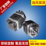 CM-FC50-FL型高压齿轮马达