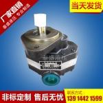 CB-FA25型高压齿轮油泵
