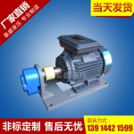 RHB-1JZ润滑油泵