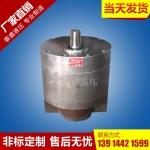 DCB-B1000大流量斜齿轮油泵(圆形)