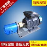 WBZ-10卧式齿轮油泵电机组