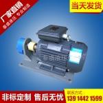 CB-B双联齿轮油泵单相电机组