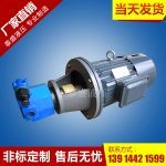S-A摆线齿轮油泵电机组