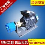 S-A双联齿轮油泵电机组