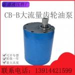 CB-BM大流量齿轮油泵