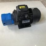 BB-B4/6/10摆线齿轮油泵电机