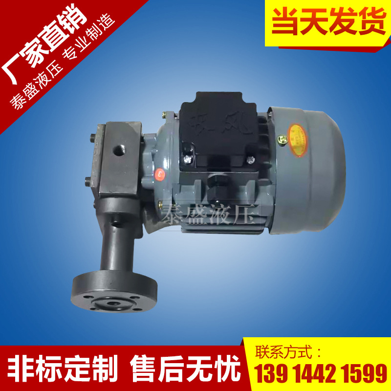 CB-1.2齿轮油泵电机组装置